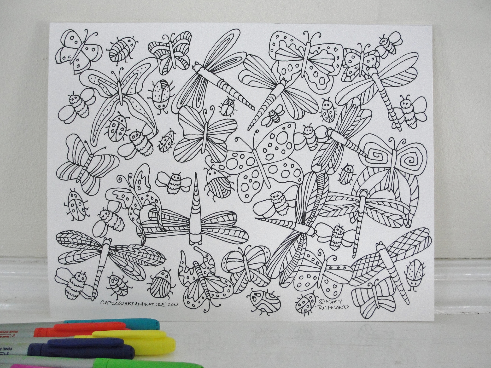 Dragonflies And Butterflies Coloring Page Downloadable Pdf